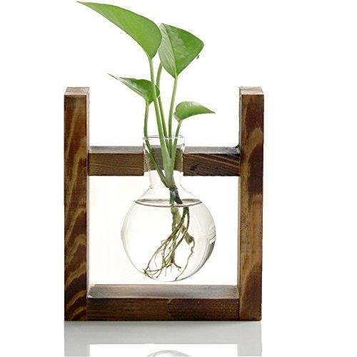 HaloVa Terrarium, Creative Fashion Plant Terrarium, Modern Decorative Glass Planter Hydroponics Terrarium with a Wooden Stand for Home Office and Centerpieces Decor, 1 Terrarium