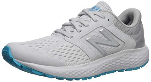New Balance Women's 520v5 Cushioning Running Shoe, ARTIC FOX/LIGHT ALUMINUM, 8 W US (Best New Balance For Flat Feet)