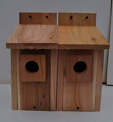 Eastern Bluebird Nest - Cedarnest Bluebird Houses 2