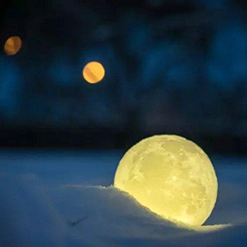 Moonlight Design Garden Lighting - 5