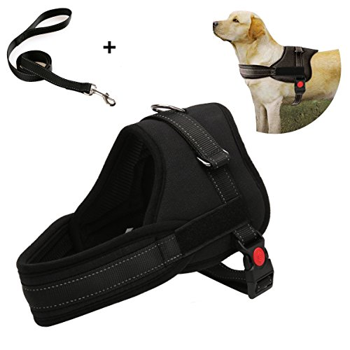 Wollgord Adjustable Pet Puppy Dog Safety Harness with Heavy Duty Leash Lead Set Collar Chest Harness Vest with Handle for Small Medium Large Dogs Training Running Walking (Black)