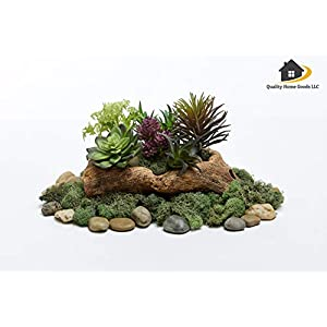 Artificial Faux Assorted Plant Succulents - Pack of 6 Small Mini Decorative Fake Flower Home Decor Pick for Indoor or Outdoor Garden, Terrarium, Aquarium, Large Pot, or Wall Planter Hanger (Spring) 2