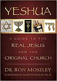 Yeshua: A Guide to the Real Jesus and the Original Church ...