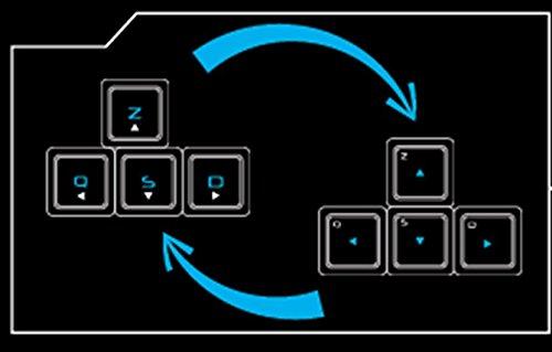 The G Lab Keyz Neon/SP Teclado Gaming Retroiluminado (Led Rainbow, 19 Teclas Anti-Ghosting, 12 Teclas Multimedia, Incluye Ñ): Amazon.es: Informática
