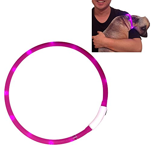 Led Dog Collar usb rechargeable waterproof Lighted dog collars Light up collars for dogs pets cat