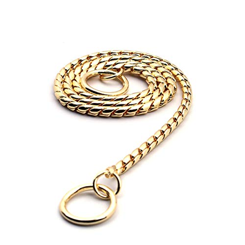 Fashbag Stainless Steel Dog Collar P Chain Plated Traction Leads Pet Collars Necklace for Small Large Dogs No Choke Collars Pet Supplies Golden 60cm ()