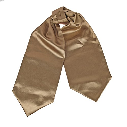 DRA7E01T Classic Marketing Management Poly Camel Solid Mens Ascot Relationships Fashion Stain Cravat Christmas Day Presents By Dan Smith