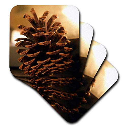 (3dRose Stamp City - still life - A close up still life photograph of a single pinecone. - set of 4 Ceramic Tile Coasters (cst_302861_3))