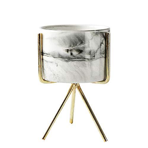 Haihuic Mini macetas Interiores con Soporte de Metal (Oro) Macetero de cerámica veteado Moderno de 12.5 cm / 4.9'Alt....