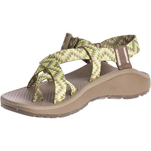 (Chaco Women's Zcloud 2 Sport Sandal, Cascade Acacia, 8 M US)