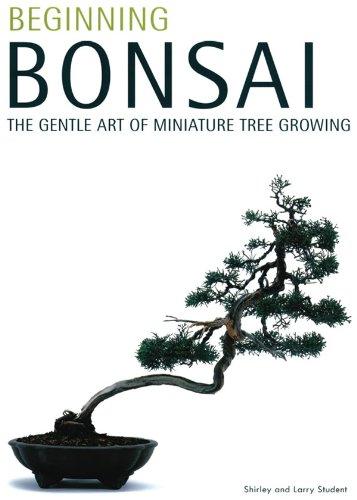 Art Bonsai Trees - Beginning Bonsai: The Gentle Art of Miniature Tree Growing