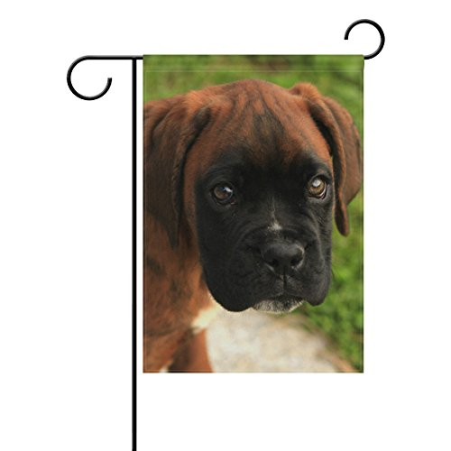 Boxers Indian (Holisaky Puppy Brown Boxer Dog Outdoor Decor Garden Flag 28 x 40 Inch Welcome Quote, House Yard Flag, Garden Yard Decorations Flag)