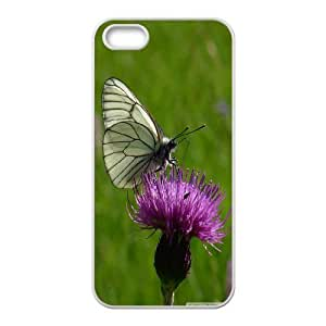 IPhone 5,5S Cases, Cute Design Cheap Black and White Butterfly 2 Cases for IPhone 5,5S {White}