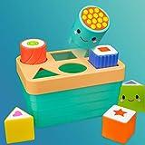 Sassy Stem Baby Box - 8+ Months