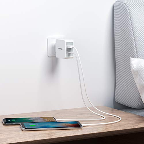 POWERADD 18W USB-C Ladegerät mit Power Delivery, 2 Ports USB Ladegerät total 30W Charger, Schnellladegerät für iPhone 11 X,XR, XS, Max, 8 Plus, iPad Pro, Nintendo Switch, Samsung, Huawei usw.