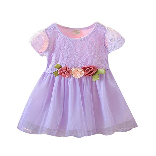 Baby Girls Floral Dress, Ruched Short-Sleeved Dress Pleated Lace-Trimmed Flower Princess Dress Clothes Age:6M-3 Years (6-12 Months, Purple)