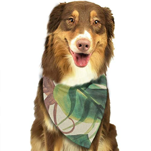 Pet Scarf Dog Bandana Bibs Triangle Head Scarfs Baby Monkey Accessories for Cats Baby Puppy ()