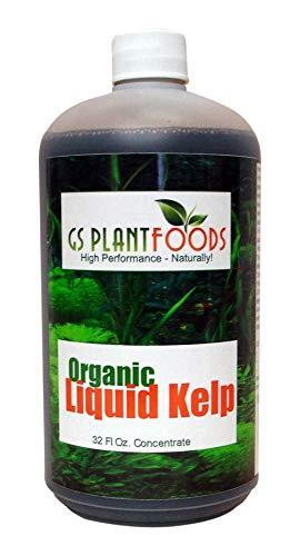 Liquid Kelp Organic Seaweed Fertilizer 32 Ounce