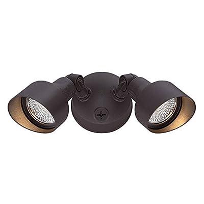 Acclaim Lighting LED Floodlights Outdoor Light Fixture