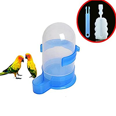 Plastic Bird Water Feeder Bottle with Free Removable Cleaning Brush fits for Parrot Dove Parakeet Small-Medium Bird Transparent Water Feeder Dispenser from Berteri
