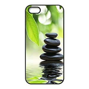 Sexyass Stone IPhone 5C Cases Black Stone for Guys Design, Apple Iphone 5c Case Luxury, [Black]