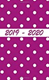 """2019 - 2020: Two Year Pocket Monthly Planner : 24-Month Calendar and Planner( Size : 4.0"""" x 6.5"""", jan 2019 - dec 2020), Agenda Planner and Schedule ... U.S. Holidays ( Mini Calendar & Planner )"""
