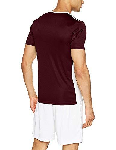 Maglietta Marrone 18 Per Entrada Adidas Bambini bianco Modello RqgTnTwaZx