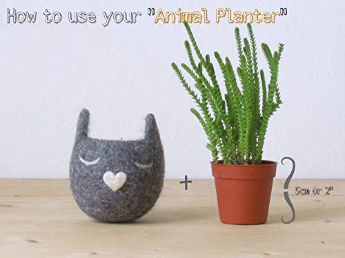 Cat lover gift for her, Felt succulent planter, small indoor planter, Grey Decorative Felt Flower Pot