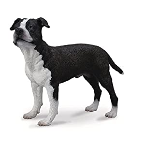 Collecta American Staffordshire Terrier 13