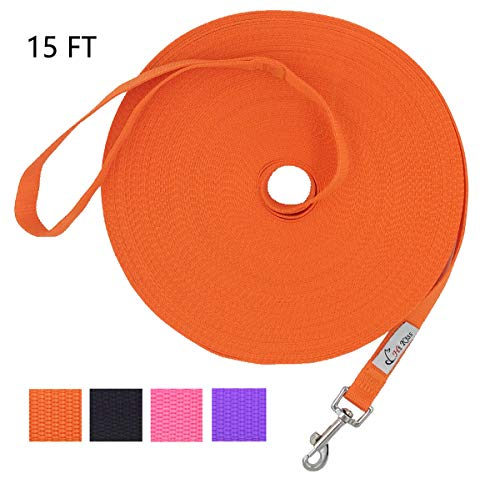 3/4 Nylon Web Lead - Hi Kiss Dog/Puppy Obedience Recall Training Agility Lead - 15ft 20ft 30ft 50ft 100ft Training Leash - Great for Training, Play, Camping, or Backyard - Orange 15ft