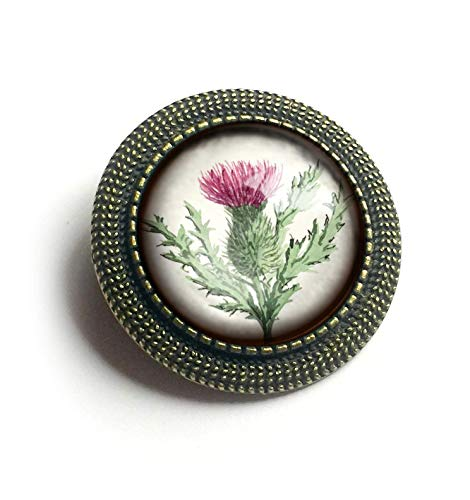 Scottish Jewellery Thistle (Scottish Thistle Glass and Brass Brooch)