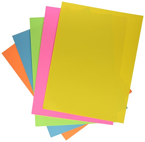 School Smart Colorwave  Super Bright Tagboard - 9 x 12 inches - Pack of 100 - Assorted Colors by School Smart