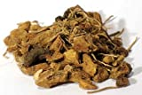 Fortune Telling Supplies Herbs Solomon's Seal Root Cut 1Lb Creation of Magical Seals Binding Spirits