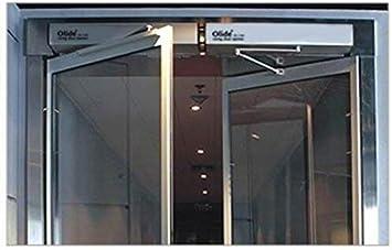 Olide SW100 - Puerta de balanceo residencial con sistema de control de acceso (SW100 + teclado de huellas dactilares + fuente de alimentación + sensor de mano + cierre magnético): Amazon.es: Bricolaje y herramientas