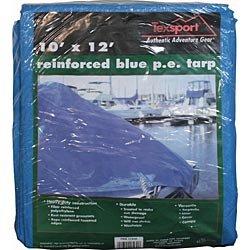 - Blue Reinforced Rip-Stop Polyethylene Tarp, 8 ' x 10'