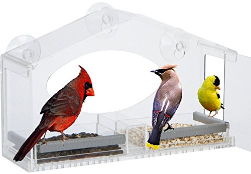 Window Squirrel Resistant Perching Removable product image