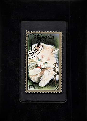 (Framed Stamp Art- Mongolia Postage Stamp - Domestic Cat )