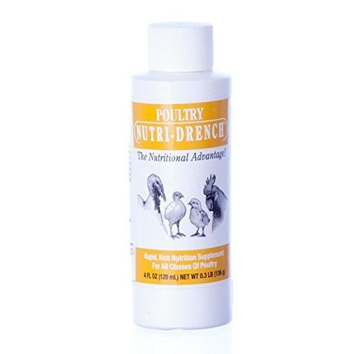 BOVIDR LABORATO Nutri-Drench Poultry Solution 4 FL OZ