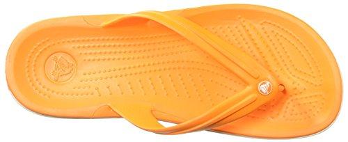 Crocs blazing Orange White Adulto Crocband Flip Unisex Flop fq7Owrf