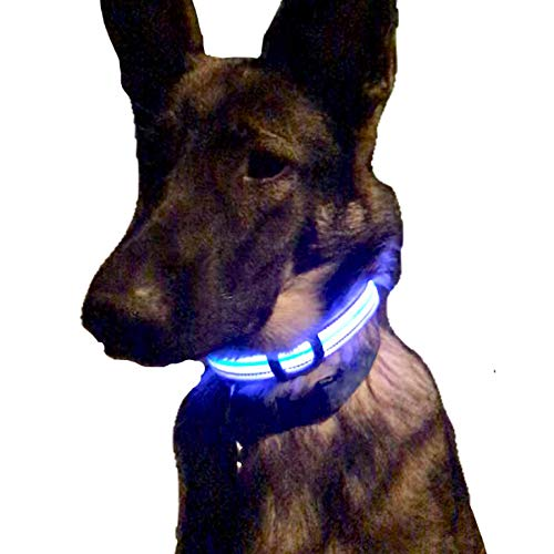 Service Animal Gear Rechargeable Waterproof product image