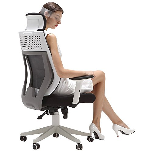 Hbada Ergonomic Office Chair - High Back Adjustable Desk Chair - Mesh Swivel Computer Chair with Headrest and Lumbar Support