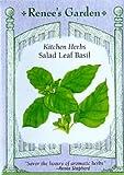 Basil Salad Leaf Seeds 500 Seeds