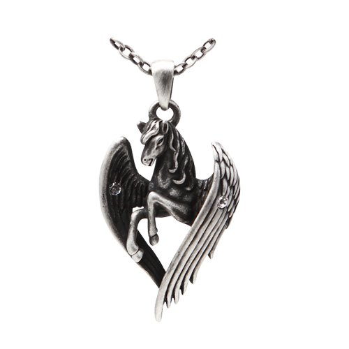 Pegasus Wings Fantasy Gothic Necklace product image