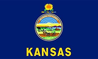 product image for Valley Forge Kansas Flag 2ft x 3ft Nylon - Outdoor