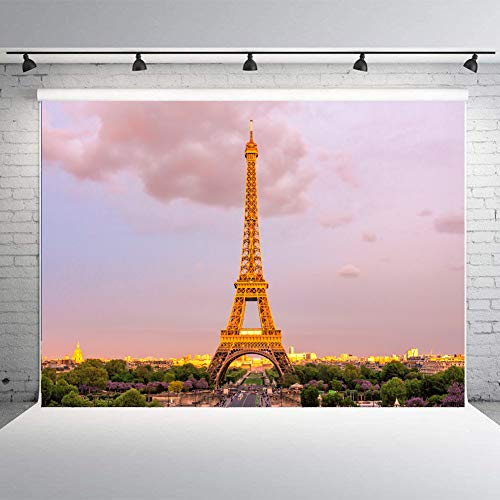 Dusk Eiffel Tower - Paris Eiffel Tower at Dusk Photo Studio Backdrop 5x7FT Sunset View of Paris Light Props Wall Photography Background EY007