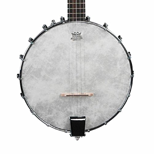 2010's Savannah Savannah Open Back Banjo w/ Free CD & Tuning Chart See Photo
