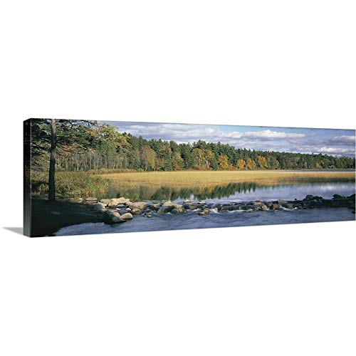 Premium Thick-Wrap Canvas Wall Art Print Entitled Minnesota, Itasca State Park, View of Trees Around a Lake 60