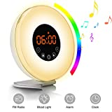 Sunrise Alarm Clock, TEKITSFUN Digital LED Clock with 7 Color Switch and FM Radio for Bedrooms,Multiple Nature Sounds Sunset Simulator & Touch Control - With Snooze Function for Adults kids