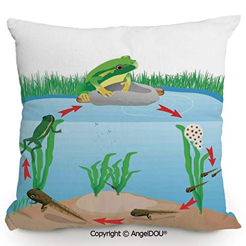 - AngelDOU Cotton Linen Square Throw Pillow,Life Cycle of Tropic Tree Frog Presents with Aquatic Elements Evolution in Nature,for Bed Living Room Sofa Office Hotel Cafe.17.7x17.7 inches