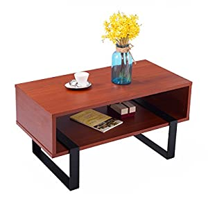 Modern Wood Multi-Purpose End Storage Coffee Table for Living Room